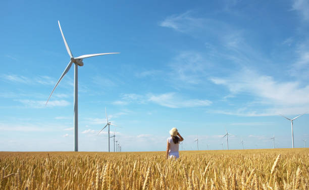 Beautiful girl on yellow field of wheat with windmills for electric power production stock photo
