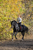 Beautiful girl riding a horse on autumn yellow park