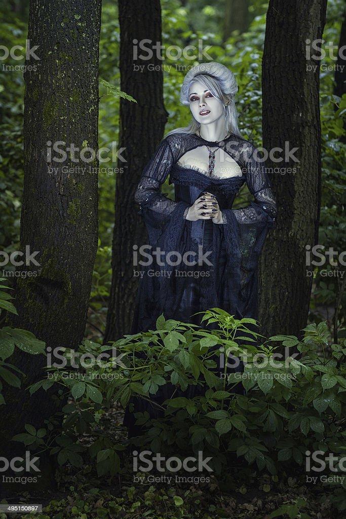 Beautiful girl witch. stock photo