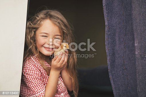 Close-up of a small girl holding a baby chicken