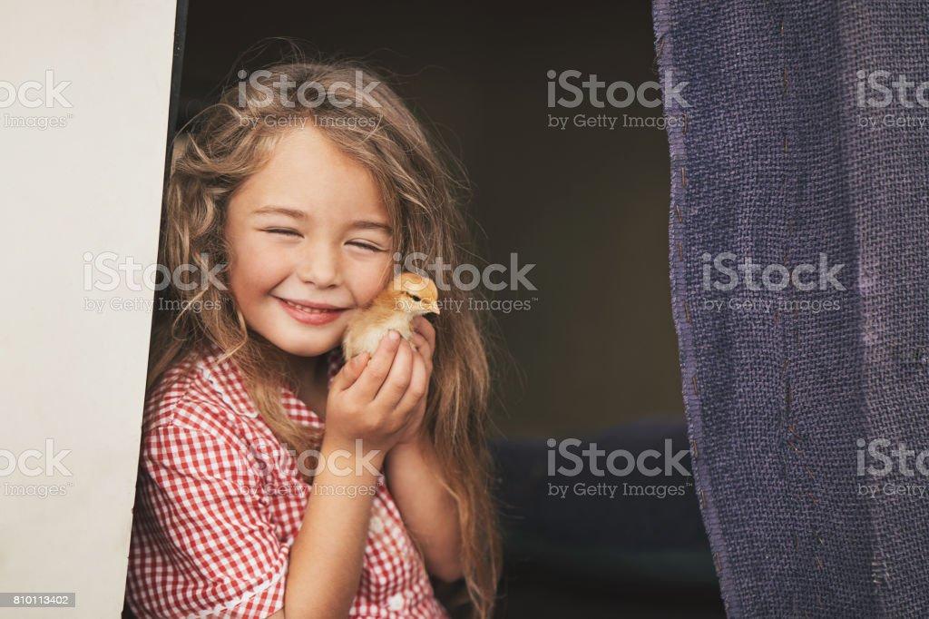 Beautiful girl with baby chicken stock photo