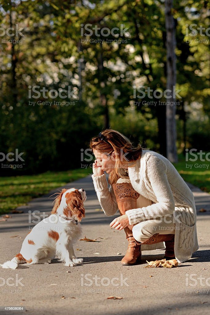 Beautiful girl with Cavalier King Charles Spaniel in the park stock photo