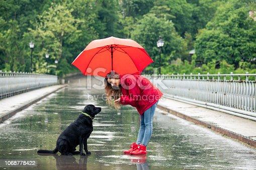 Beautiful girl with umbrella talking to a dog, on bridge.