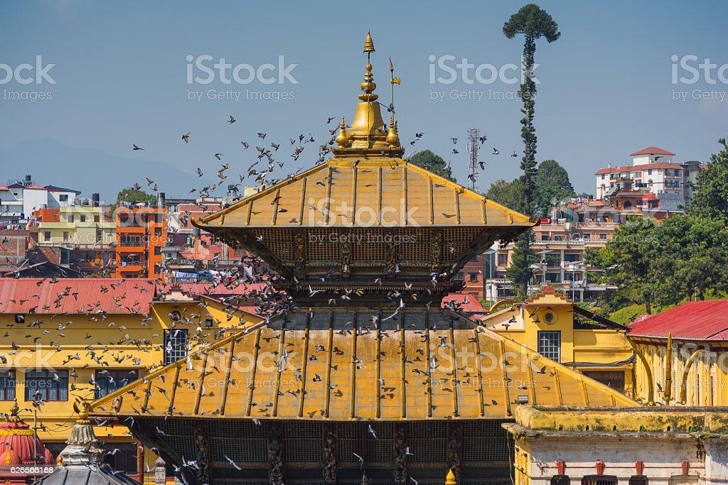 Beautiful Golden Roof at Pashupatinath Temple Kathmandu ,Nepal. stock photo