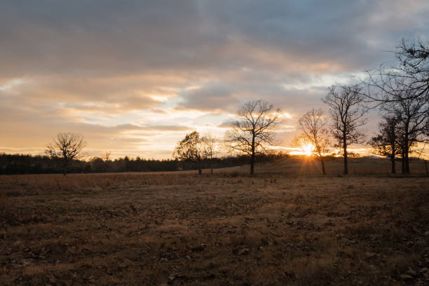 Beautiful golden  Sunset on a Ranch stock photo