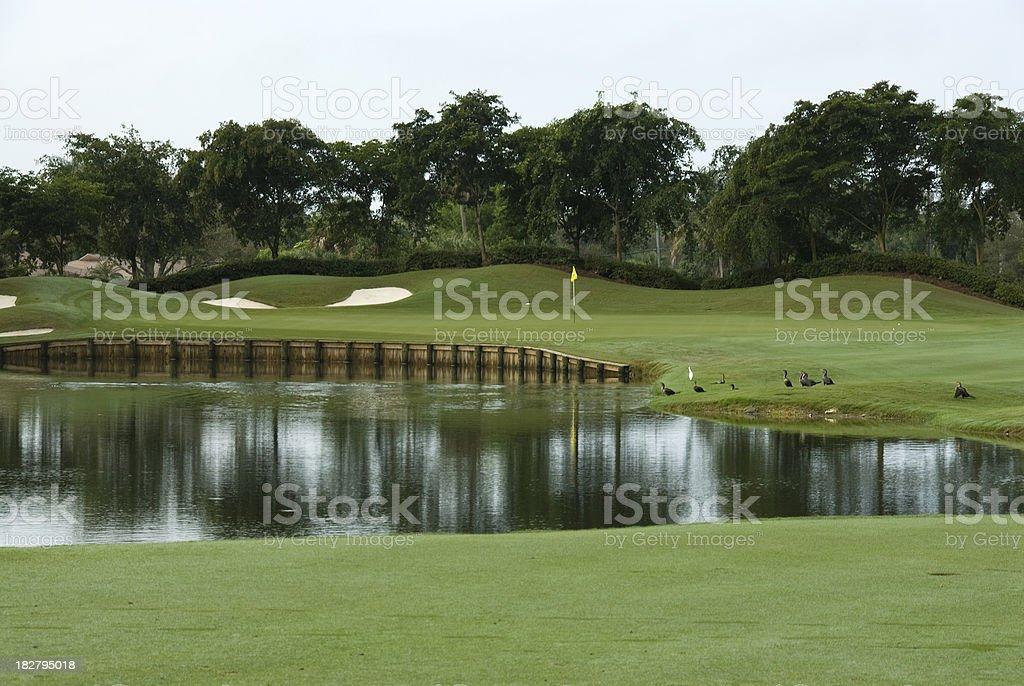 Beautiful Golf Course in Louisiana royalty-free stock photo