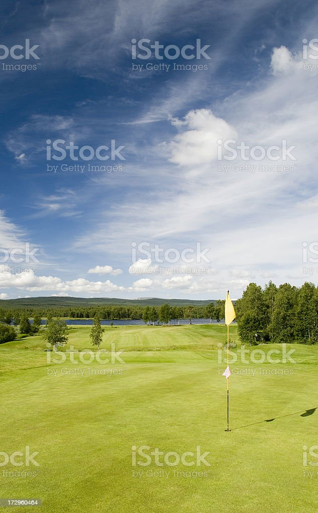 Landscape of a green field with trees and a bright blue sky.
