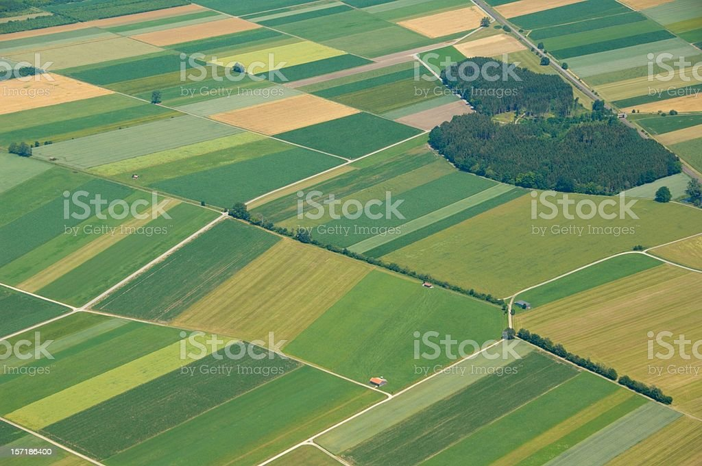 beautiful grassland royalty-free stock photo