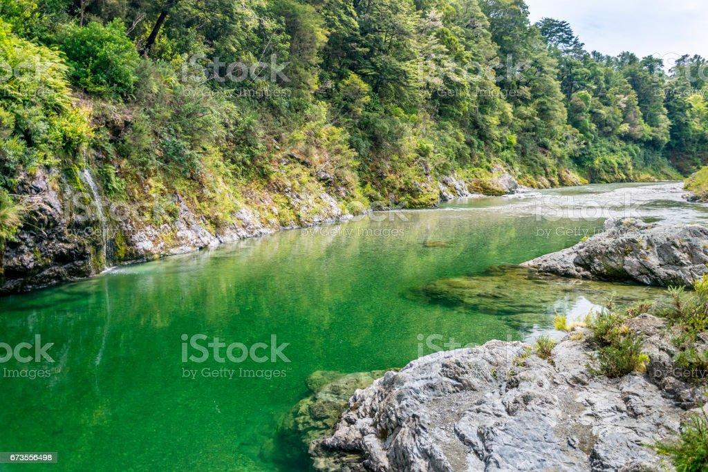 Beautiful green and clear Pelorus river, New Zealand stock photo