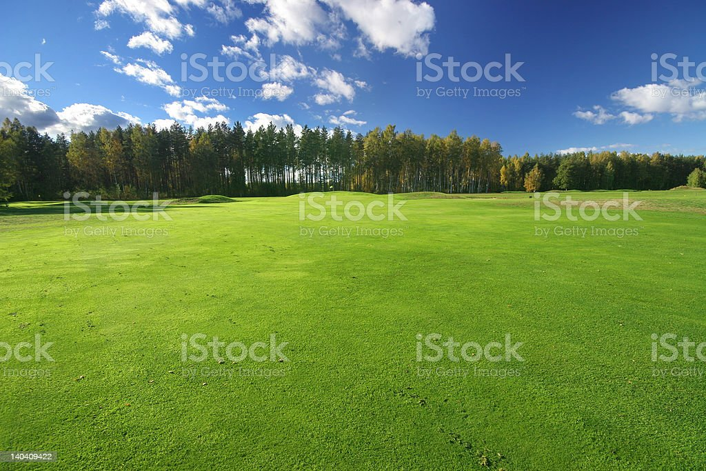 Beautiful green field and blue sky royalty-free stock photo