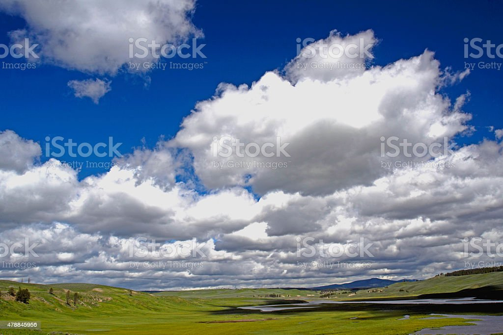 Beautiful green fields and blue skies of Yellowstone National Park. stock photo