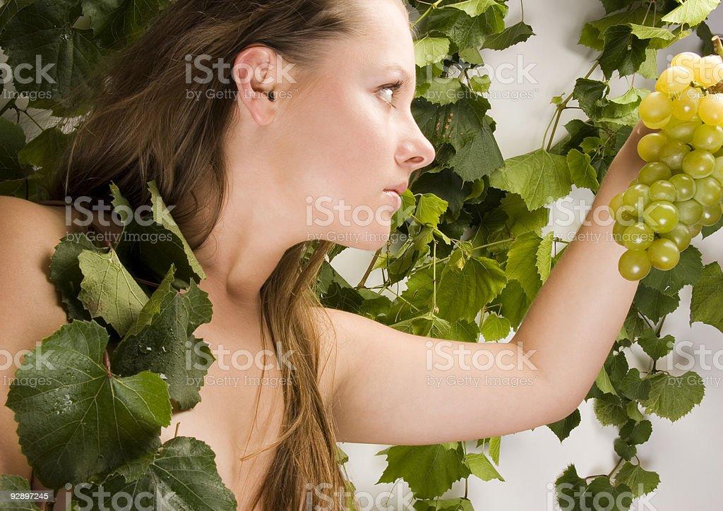 Beautiful green grape royalty-free stock photo