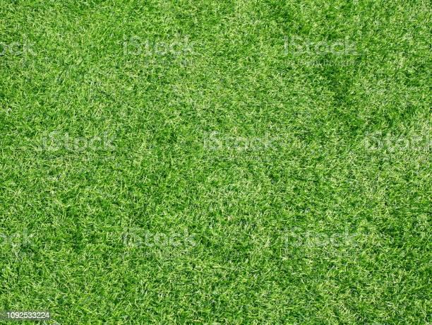 Beautiful green grass pattern from golf course picture id1092533224?b=1&k=6&m=1092533224&s=612x612&h=lbkohx zrrkkdz6cutaq554gqbkhjrldq7a prviwkg=