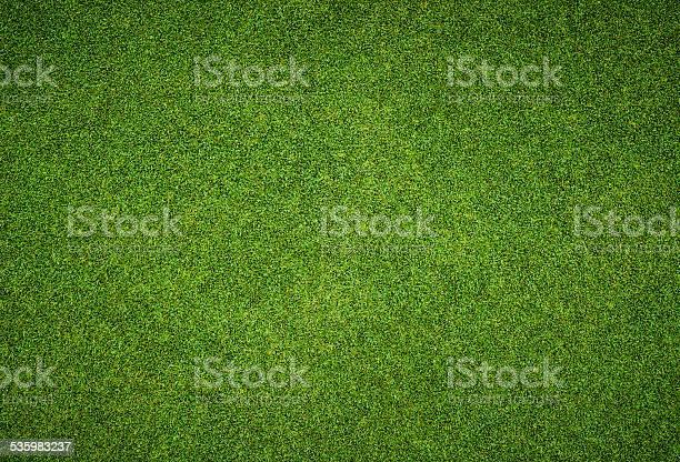 Beautiful green grass pattern from golf course picture id535983237?b=1&k=6&m=535983237&s=612x612&h=yarex9 trkzunuzwlg6ufizjwckhwkpyegdxjr8shok=