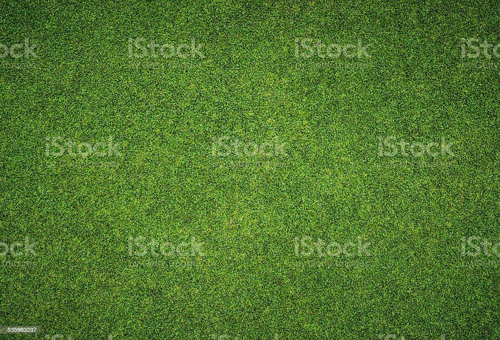 Hermoso patrón de hierba verde campo de golf - foto de stock