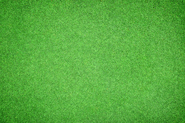 Beautiful green grass texture Beautiful green grass texture turf stock pictures, royalty-free photos & images