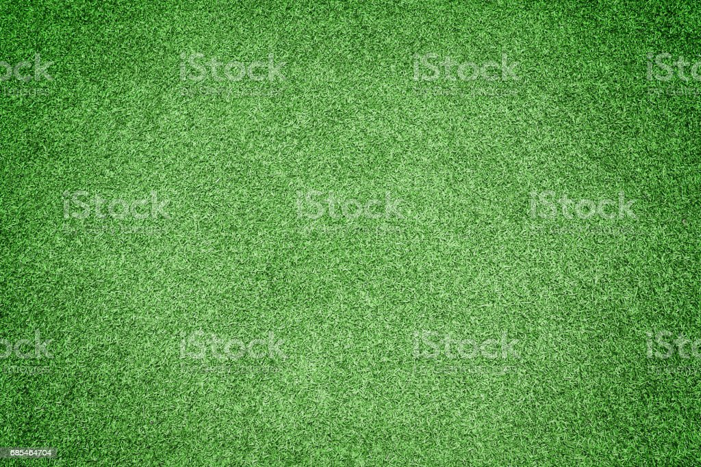 Beautiful green grass texture foto de stock royalty-free