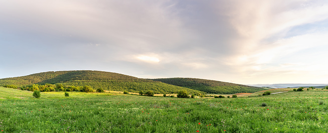 Beautiful green hills and valley in setting sun light. Great design for any purposes. Beautiful summer landscape panorama. Nature background. Travel concept. Copy space.