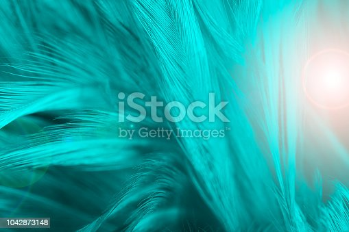 istock Beautiful green turquoise vintage color trends feather texture background with orange light 1042873148