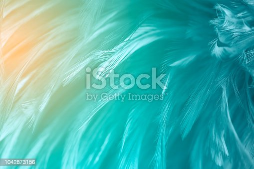 istock Beautiful green turquoise vintage color trends feather texture background with orange light 1042873156