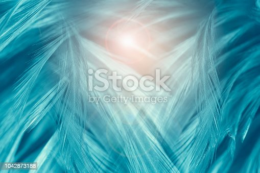 istock Beautiful green turquoise vintage color trends feather texture background with orange light 1042873188