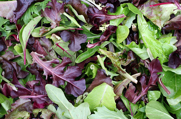 beautiful greens - 生菜 個照片及圖片檔