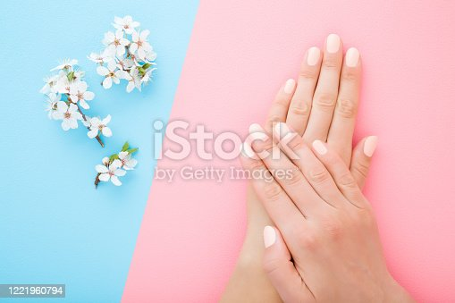 1147741037 istock photo Beautiful groomed woman hands with white branch of cherry blossoms on light pink blue table background. Pastel color. Closeup. Manicure beauty salon concept. Top down view. Two sides. 1221960794