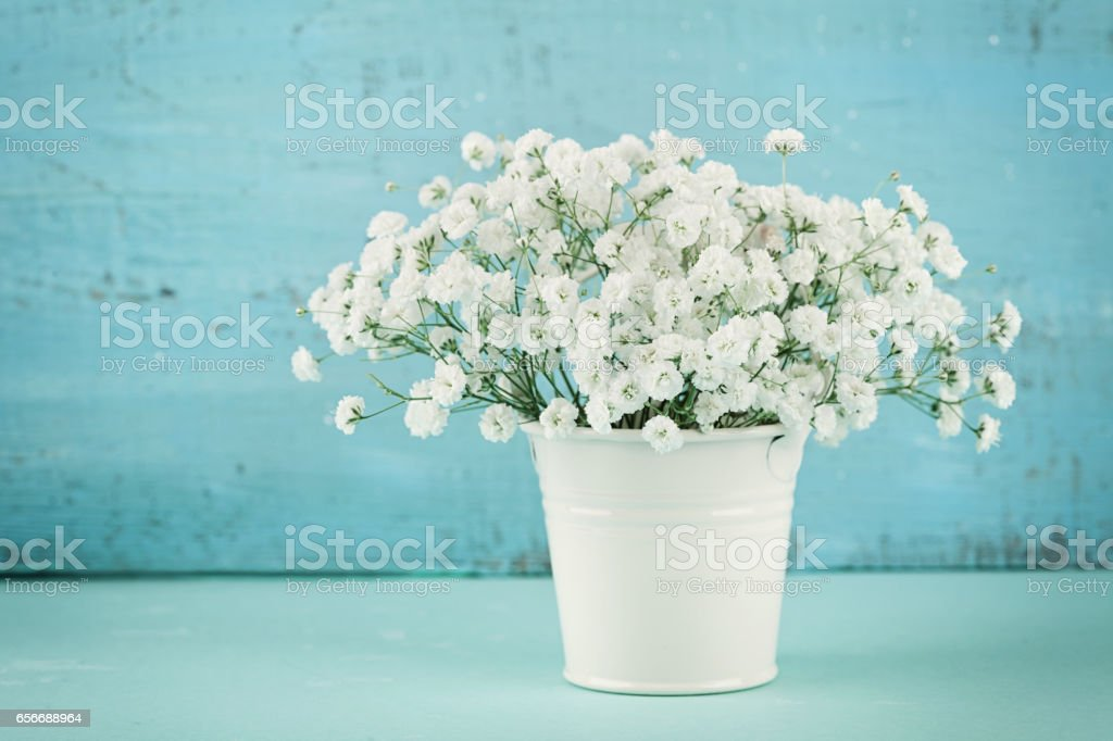 Beautiful gypsophilla spring flower bouquet in white vase. Vintage background. Rustic style. stock photo