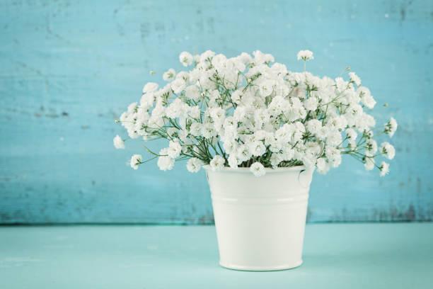 vacker gypsophilla vårblombukett i vit vas. vintage bakgrund. rustik stil. - flower bouquet blue and white bildbanksfoton och bilder