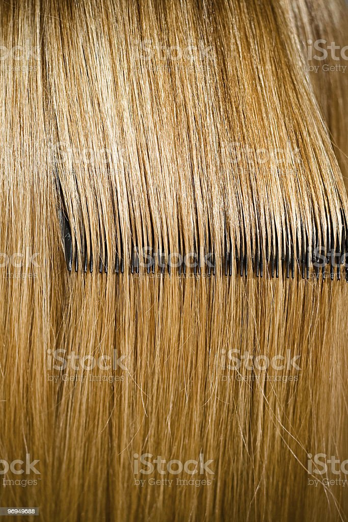 beautiful hairs royalty-free stock photo