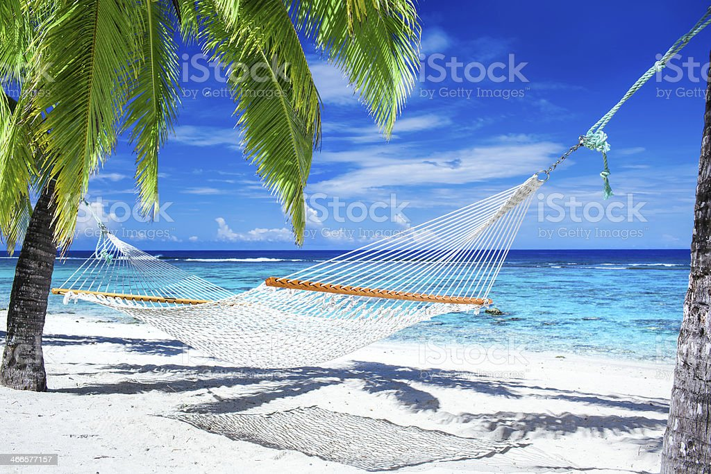 A beautiful hammock between palm trees by the beach stock photo