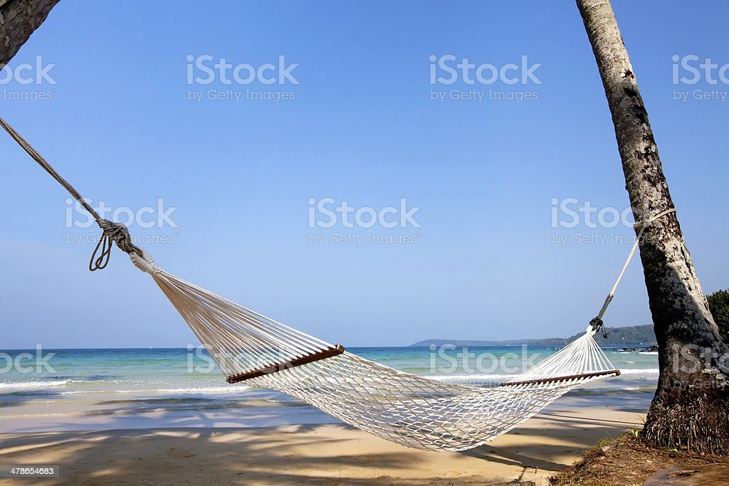 beautiful hammock on he beach stock photo