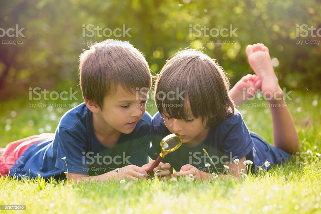 Beautiful happy children, boy brothers, exploring nature with ma stock photo