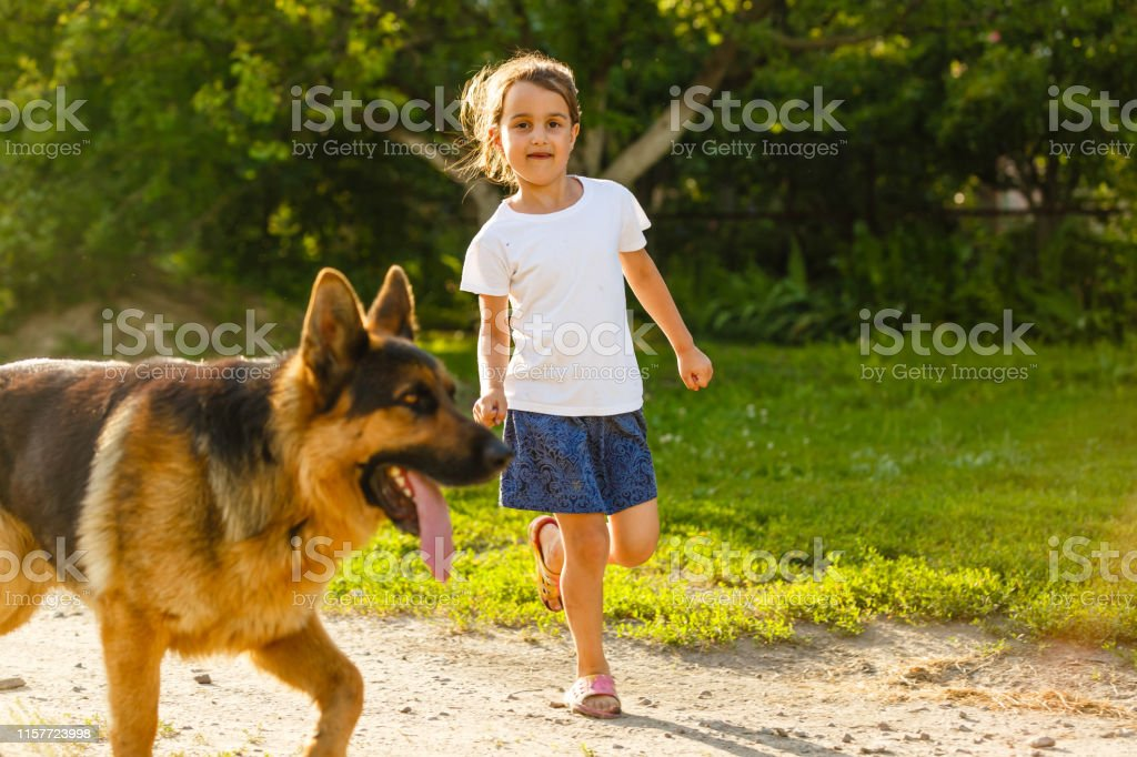 Beautiful happy family is having fun with golden retriever outdoors. Mother and daughter are running with dog labrador in park Beautiful happy family is having fun with golden retriever outdoors. daughter are running with dog labrador in parkBeautiful happy family is having fun with golden retriever outdoors. Mother and daughter are running with dog labrador in park Agricultural Field Stock Photo