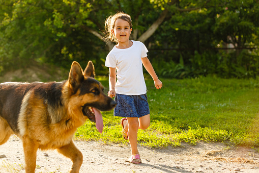 Beautiful Happy Family Is Having Fun With Golden Retriever Outdoors Mother And Daughter Are Running With Dog Labrador In Park Stock Photo - Download Image Now