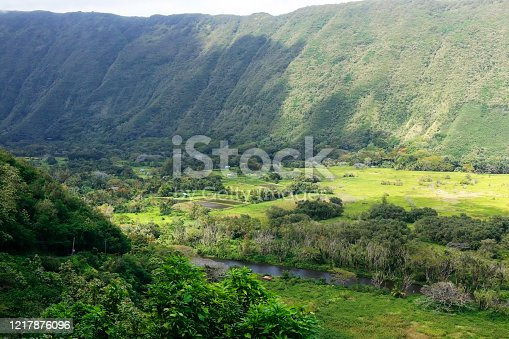 Scenic aerial view of valley with residential neighborhood between hills with lush tropical plants and trees at Waipio Valley.