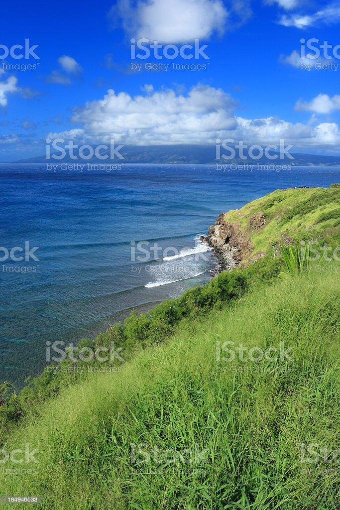 Beautiful Hawaiian landscape royalty-free stock photo