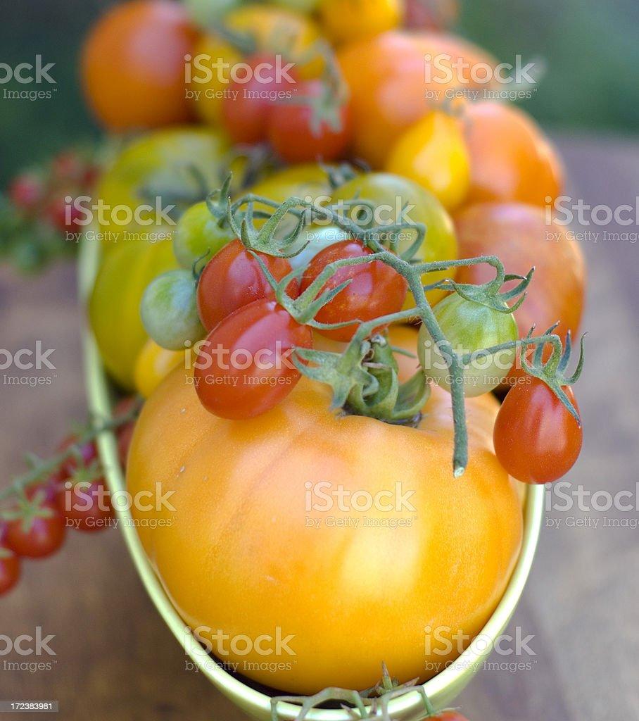 Beautiful Heirloom Tomatoes! royalty-free stock photo