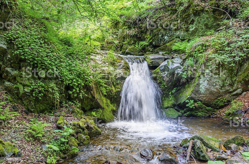 Beautiful Hidden rain forest waterfall royalty-free stock photo