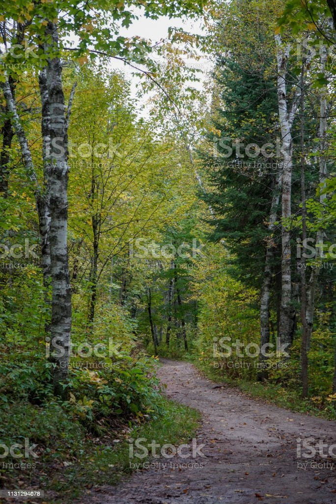 Beautiful Hiking Trail at Jay Cooke State Park stock photo