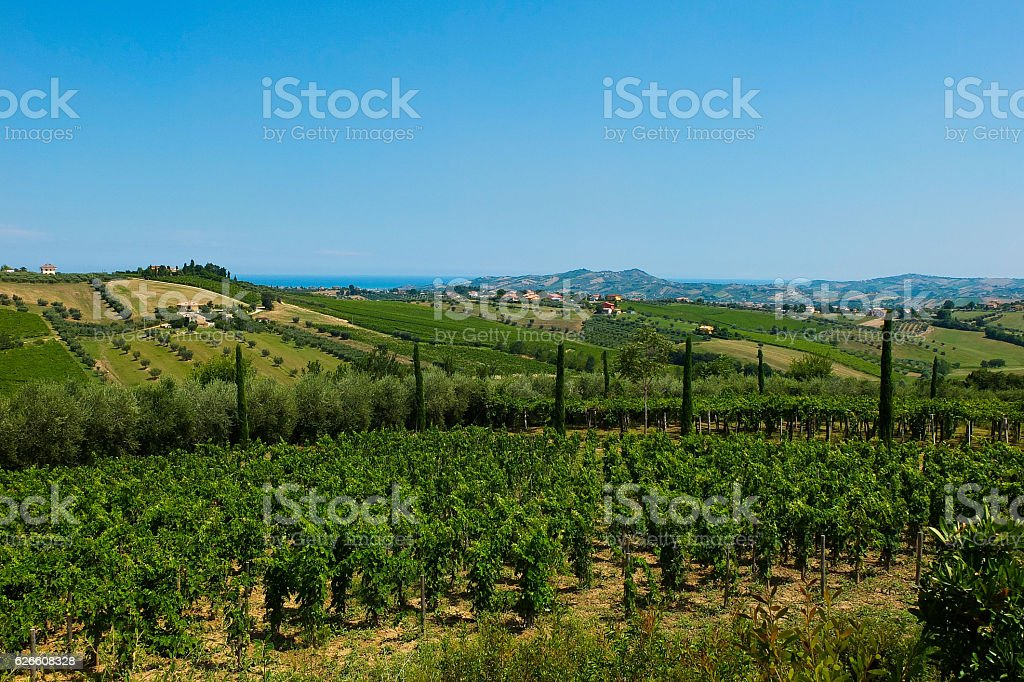 beautiful hills in the province of Teramo in Italy - foto de stock