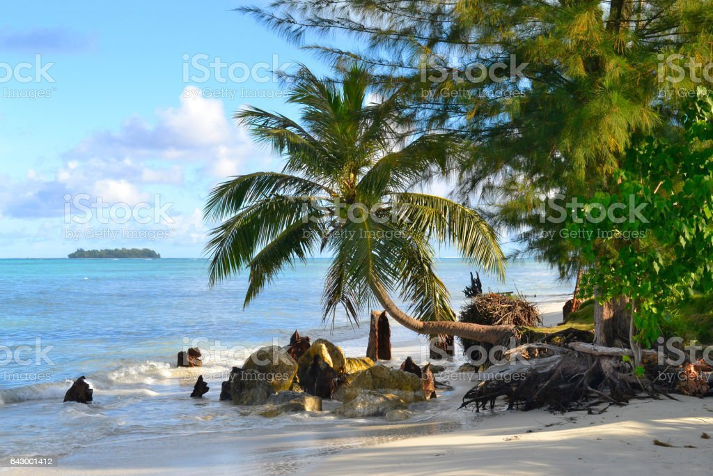 Beautiful holiday on the island of Saipan. The beautiful island of Saipan. stock photo