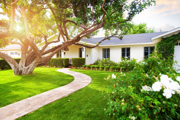 Beautiful Home With Green Grass Yard Beautiful white color single family home in Phoenix, Arizona USA with big green grass yard, large tree and roses lawn stock pictures, royalty-free photos & images