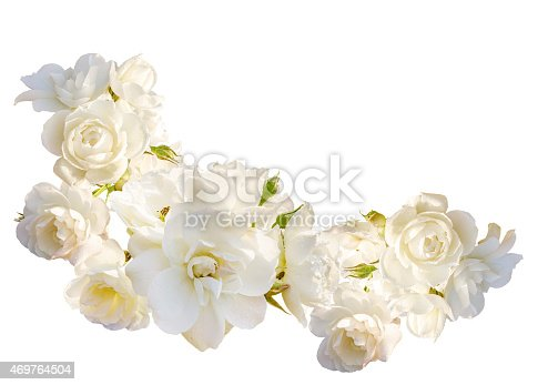 istock Beautiful  horizontal frame with bouquet of roses  isolated on white 469764504