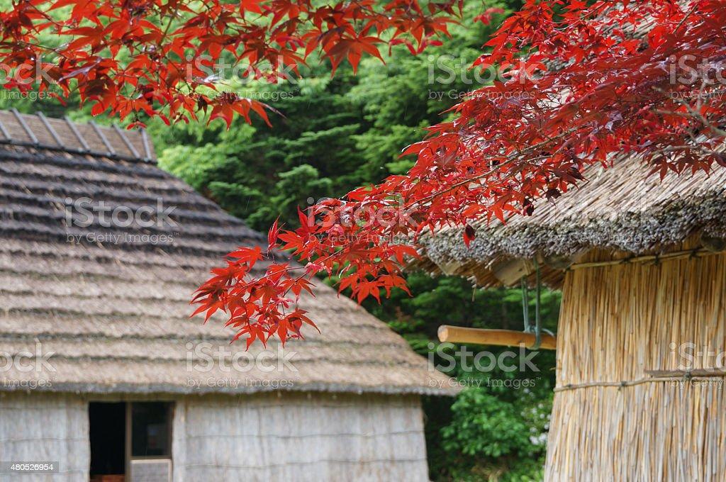 Beautiful house Hokkaido stock photo