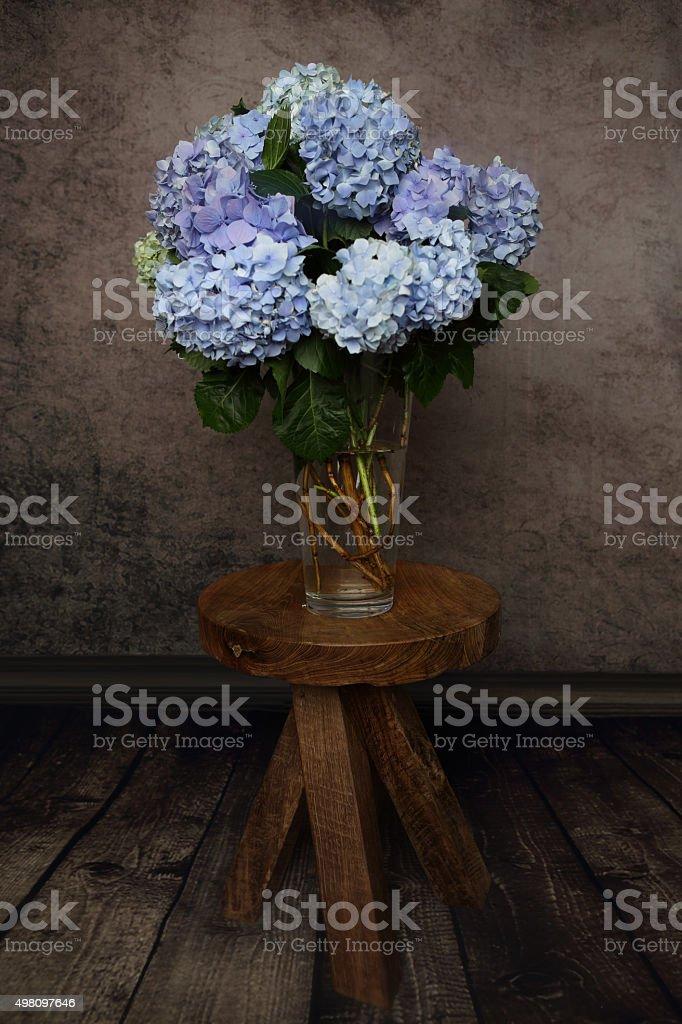 Beautiful hydrangea flowers in a vase stock photo