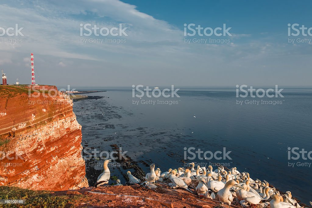 Beautiful island named Helgoland at the Northen sea of Germany stock photo