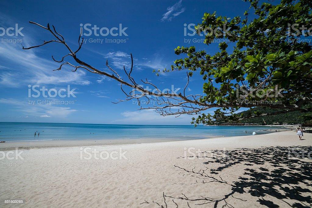 beautiful island of Thailand stock photo
