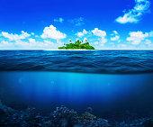 、ヤシの木が、美しい島の海。TM
