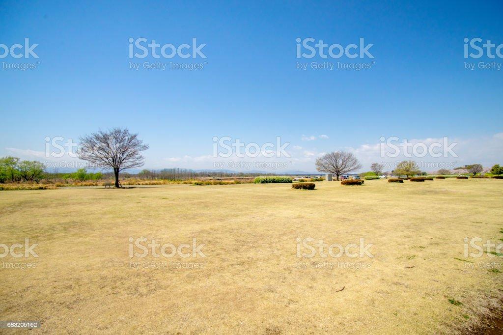 美麗的日本風景 免版稅 stock photo